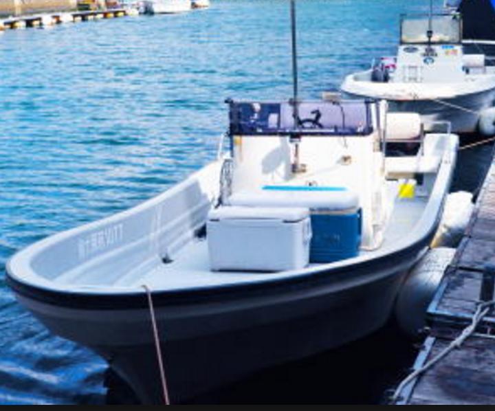 ボート-シーバス
